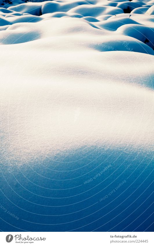 Erotic snowfield Environment Nature Landscape Elements Winter Climate Weather Beautiful weather Ice Frost Snow Cold Round Blue White Curve Snowscape Snow layer