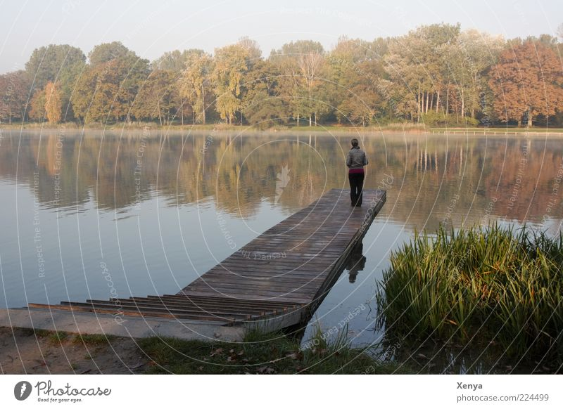 Human being Nature Calm Loneliness Autumn Landscape Dream Sadness Think Lake Wait Hope Stand Longing Footbridge Lakeside