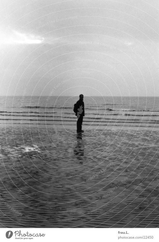 grey in grey Ocean Beach Winter Man Loneliness Cold Waves Low tide Wet Coast Dark St. Peter-Ording Human being North Sea Evening Sand Water