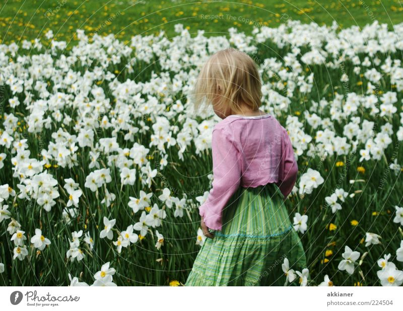 Human being Child Nature White Green Plant Girl Flower Environment Meadow Hair and hairstyles Garden Blossom Spring Bright Park