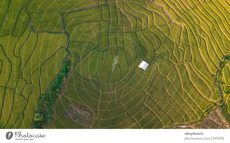 Aerial top view photo from flying drone Beautiful Vacation & Travel Tourism Mountain House (Residential Structure) Environment Nature Landscape Sky Tree Forest
