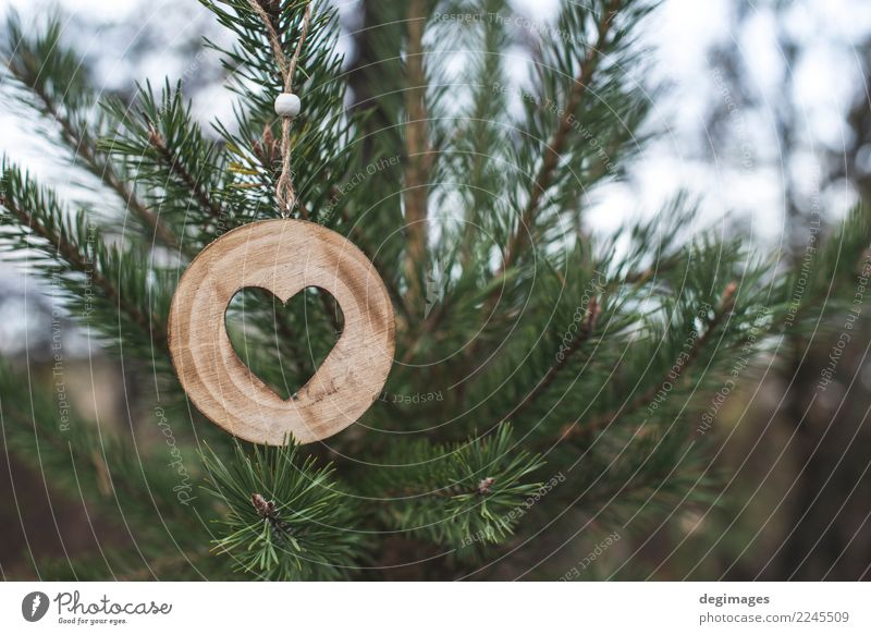 Wooden heart shape on fir Decoration Christmas & Advent Nature Tree Forest Heart Old Love Natural Brown Green White background christmas bark Consistency trunk