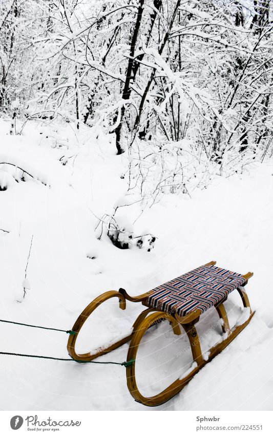 Lonely sleigh Trip Winter Snow Cold Exterior shot Deserted Contrast Deep depth of field Sleigh Snow layer Snowscape Classic Old fashioned Object photography