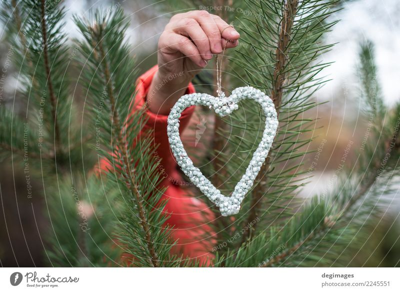 Hand hold heart shape of crystals Luxury Design Winter Decoration Woman Adults Sand Tree Forest Fashion Jewellery Heart Love Red Romance Diamond Hold show