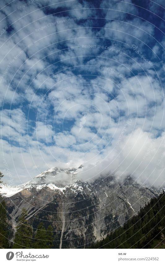 Cloudy to cheerful Sky Clouds Summer Autumn Beautiful weather Snow Forest Alps Mountain Chalk alps Karwendelgebirge chamois yoke Snowcapped peak Sharp-edged