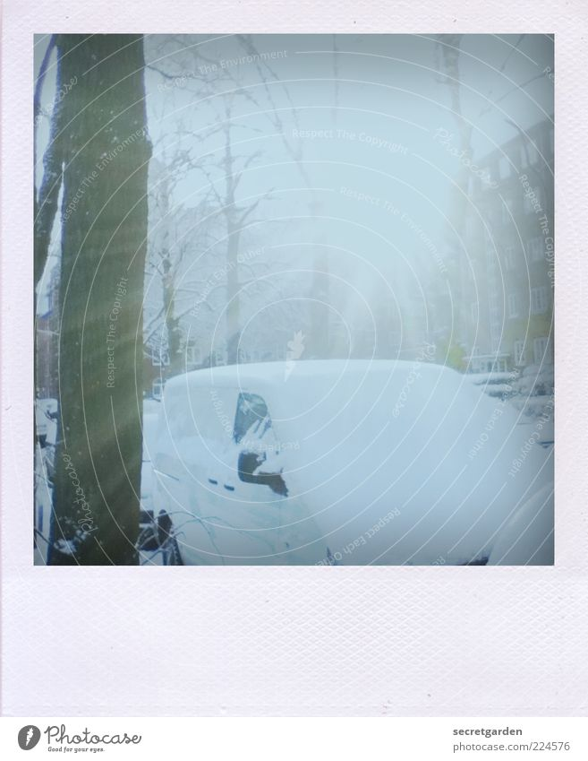 Nature White City Tree Winter Cold Snow Environment Car Moody Bright Illuminate Analog Polaroid Vehicle Parking