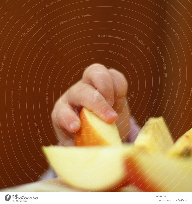 Child Red Yellow Eating Healthy Baby Fruit Gold Food Fresh Nutrition Fingers Cute Apple Part Appetite