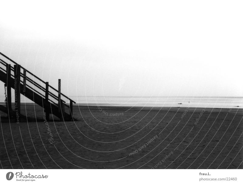 Stairs to the sea St. Peter-Ording Winter Beach Ocean Loneliness Coast Low tide Dark Things North Sea Sand Landscape Gloomy Water High tide Black & white photo