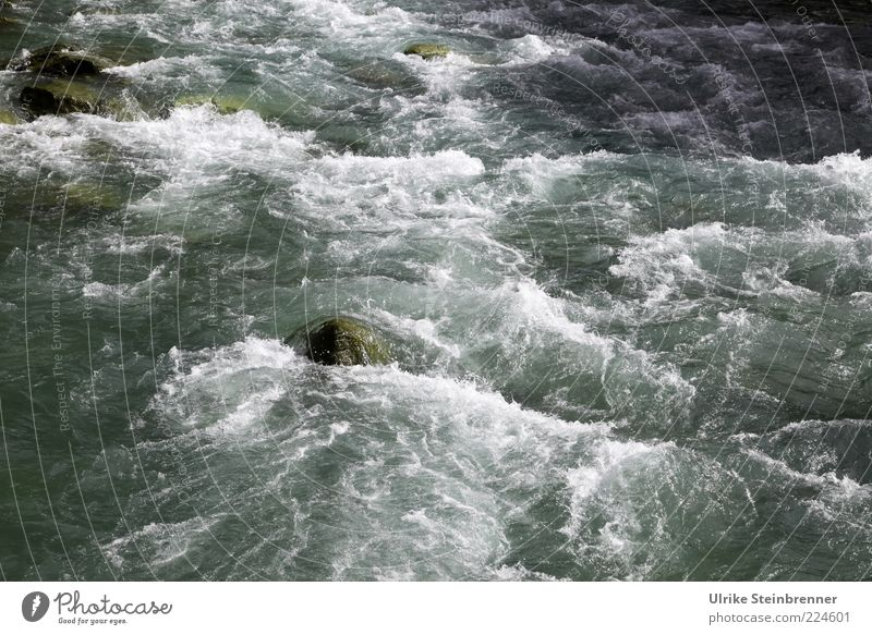 Water Cold Stone Waves Glittering Wet Rock Force Speed Fresh Wild Natural River Clean Brook Flow