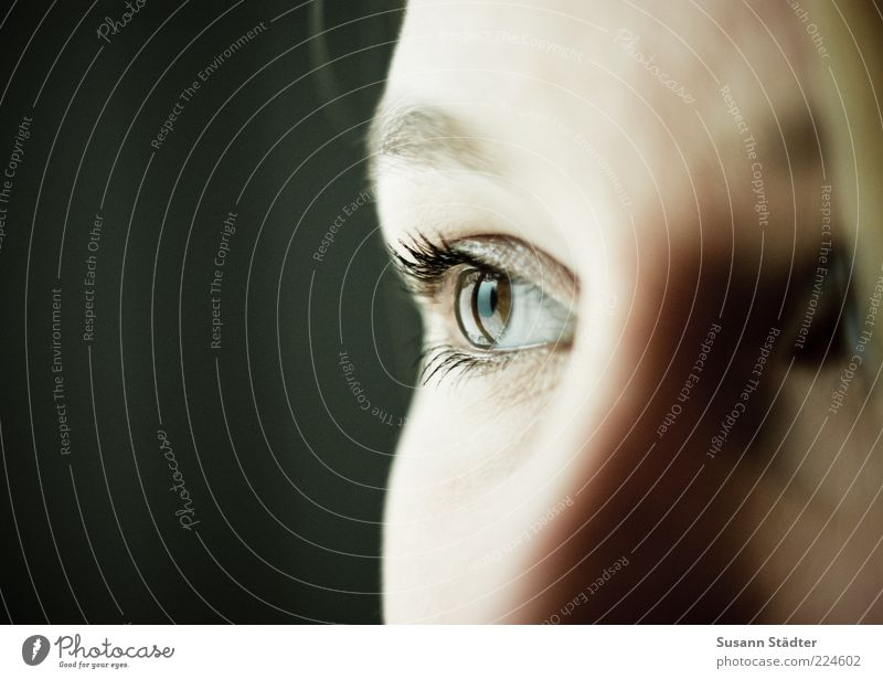 Human being Youth (Young adults) Face Eyes Feminine Dream Sadness Brown Observe Woman Eyelash Eyebrow Young woman Women's eyes Eye colour