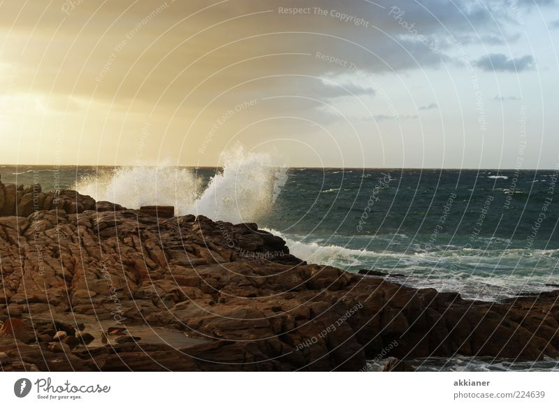 forces of nature Environment Nature Landscape Elements Earth Air Water Summer Waves Coast Ocean Wet Natural White crest Cliff Stone Rock Colour photo