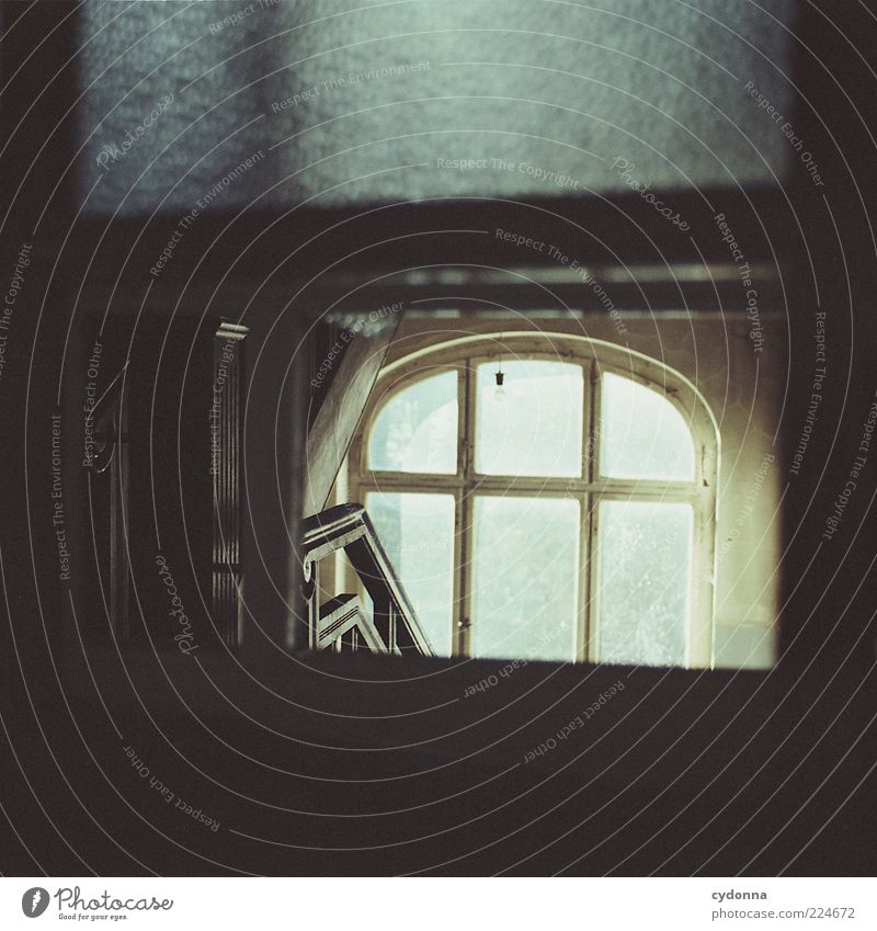stairwell Lifestyle Elegant Well-being Calm Living or residing Room House (Residential Structure) Stairs Window Esthetic Loneliness Mysterious Nostalgia