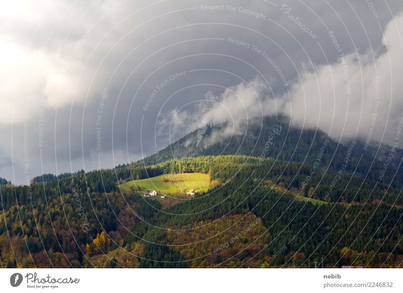 Black Forest peaks Vacation & Travel Tourism Trip Mountain Hiking Nature Landscape Clouds Storm clouds Sun Autumn Weather Thunder and lightning Tree Grass Hill