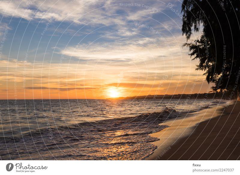 Mui Ne Beach Sunset Dusk Ocean Gold Evening Multicoloured Clouds Mood lighting Sky Nature Landscape Vietnam mui ne sinful Vietnam Summer To enjoy