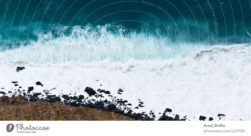 Beach Ocean Coast Waves Background picture Large Force Wild Gale Storm Dynamics Surf White crest High tide Swell Force of nature