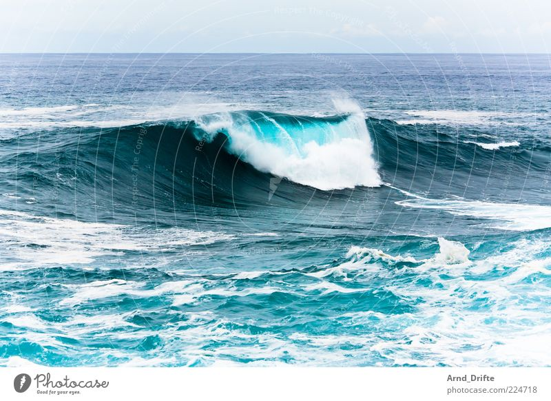 shaft II Beach Ocean Waves Storm Gale Coast Large Background picture Surf White crest Colour photo Exterior shot Day Power Hydroelectric  power plant Foam