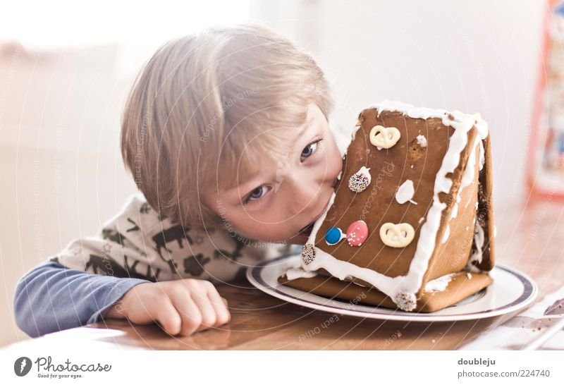 gingerbread bite Boy (child) Child Gingerbread Gingerbread house Nutrition Eating Bite Table Masculine Winter Wood Watchfulness Looking up Direct Plate