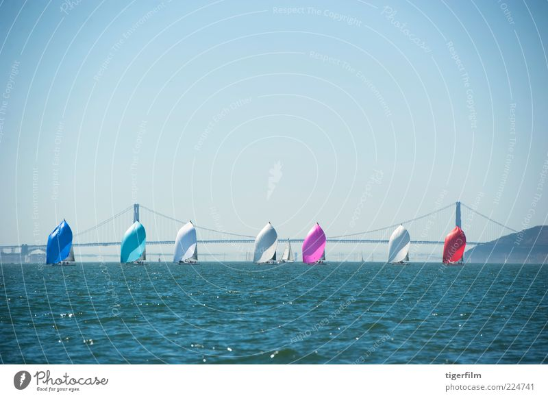 racing sailboats in a row Golden Gate Bridge Bay Blue Watercraft California Championship Colour Row Competition Front end Sail Sailboat San Francisco September