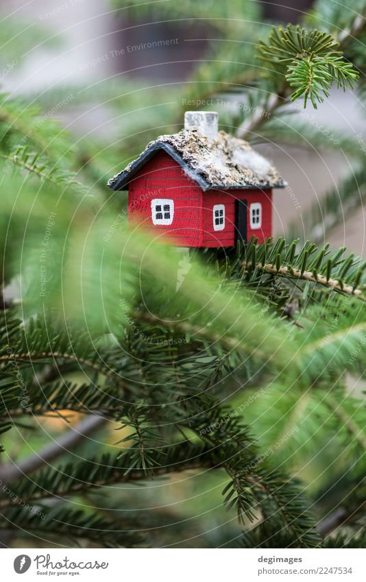 House miniature on fir tree Christmas & Advent Green White Tree Red House (Residential Structure) Winter Snow Small Happy Bird Decoration Authentic New