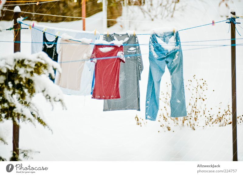 Winter Cold Snow Clothing Frost T-shirt Jeans Frozen Underwear Washing Clothesline Winter's day Washing day