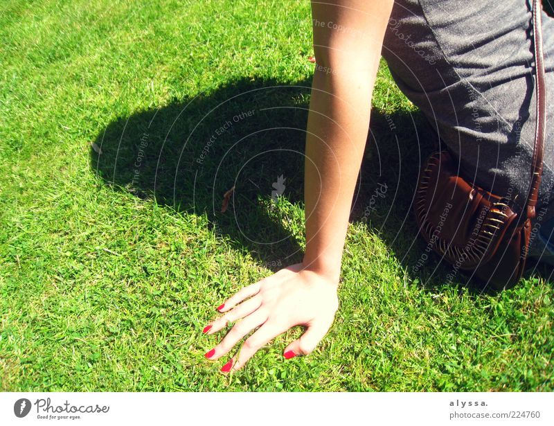 sunny times. Feminine Young woman Youth (Young adults) Arm Hand 1 Human being Grass Green Colour photo Exterior shot Day Shadow Sunbathing Women`s hand
