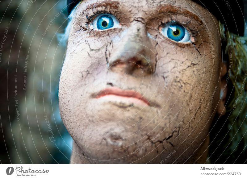 Old Blue Head Skin Large Masculine Broken Wrinkle Dry Doll Crack & Rip & Tear Motionless Looking Portrait photograph Hypnotic Wooden figure