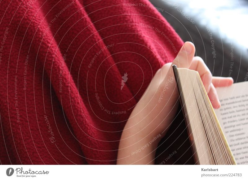 reading. Lifestyle Leisure and hobbies Reading Education Study Human being Hand 1 Print media Book Characters Red Emotions Calm Wool blanket Cozy Colour photo