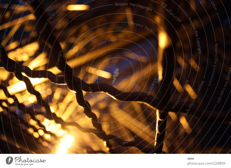 behind bars Tourist Attraction Landmark Monument Eiffel Tower Fence Grating Mesh grid Protective Grating Dark Colour photo Close-up Detail Abstract Pattern