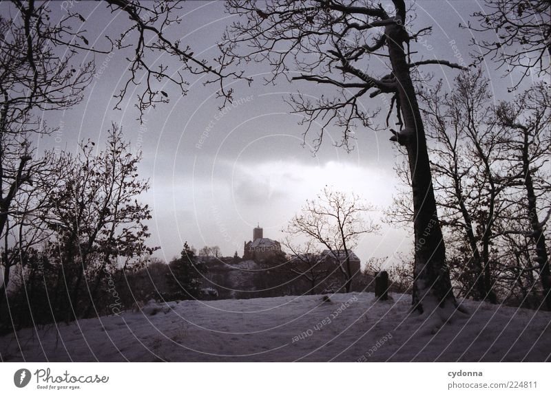 Wartburgblick I Trip Far-off places Sightseeing Winter vacation Environment Nature Landscape Clouds Snow Tree Forest Loneliness Nostalgia Calm Stagnating Past