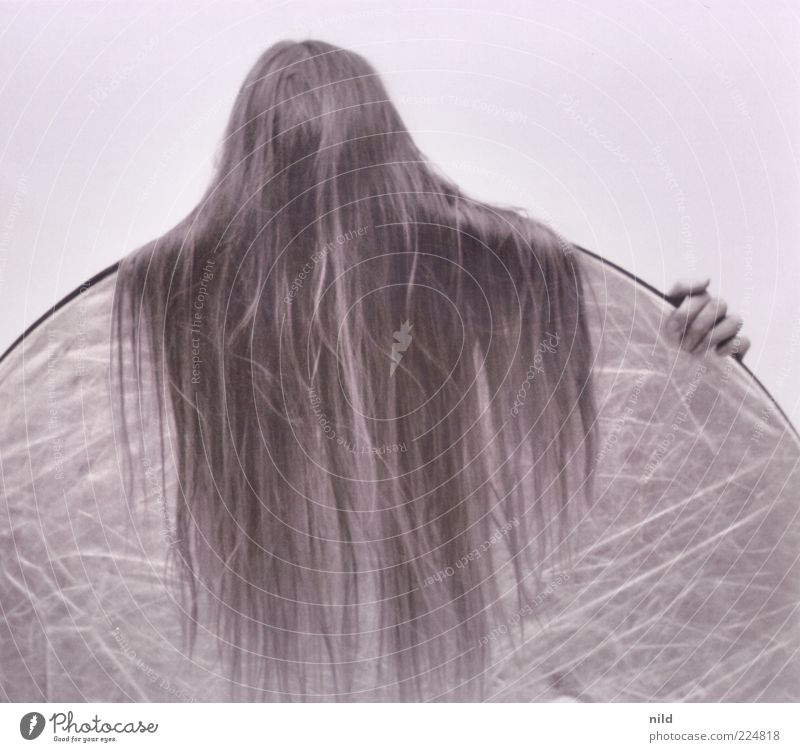 hairy Human being Woman Adults Hair and hairstyles 1 Long-haired Reflector Hide Wrap up warm Unrecognizable Black & white photo Studio shot Neutral Background