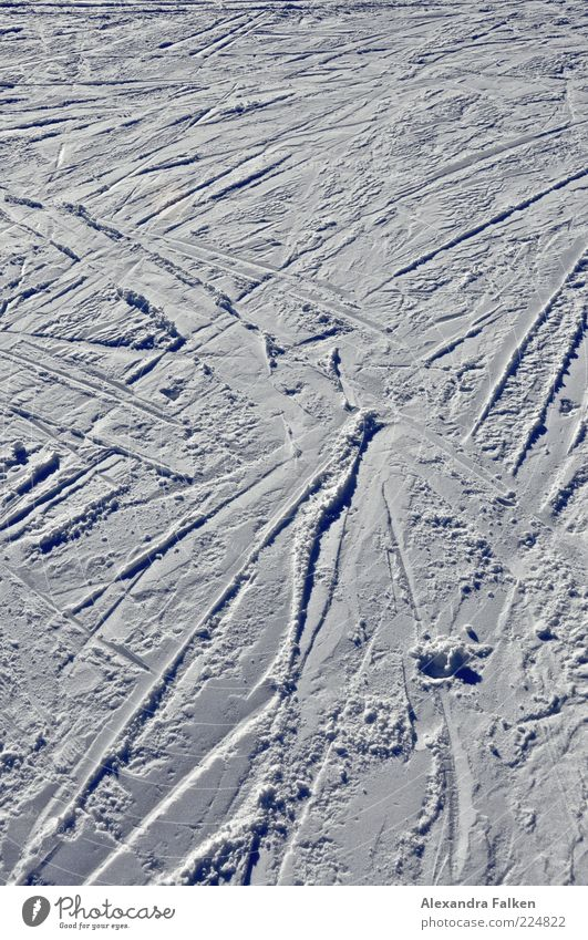 all over the place. Winter sports Skiing Ski run Snow Cold Tracks Holiday season Colour photo Exterior shot Deserted Copy Space top Day Shadow Contrast