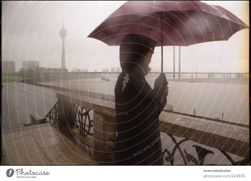 Human being City Calm Adults Far-off places Freedom Moody Rain Fog Wet Drops of water Bridge Tower To go for a walk River Observe