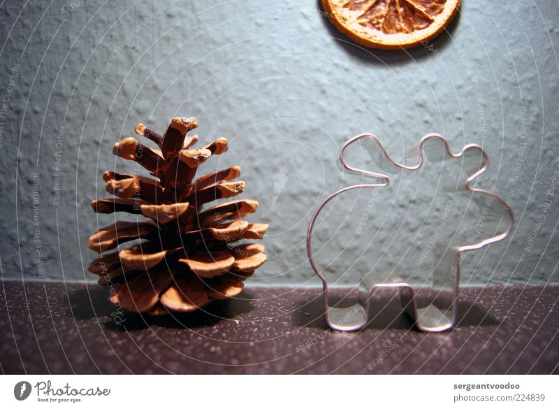 Christmas motif Winter Cone Reindeer Deer Decoration Kitsch Odds and ends Baking tin Metal Funny Moody Calm Whimsical Surrealism Exceptional Placed