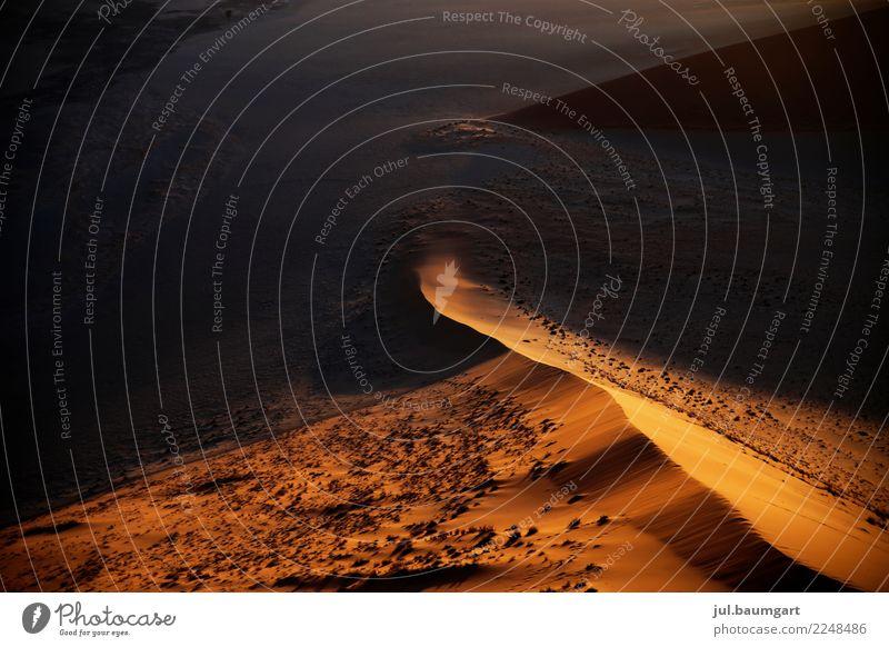Namibia Sossusvlei Dunes Nature Landscape Earth Sand Desert Gold Colour photo Exterior shot Deserted Morning Dawn Light Shadow Light (Natural Phenomenon)
