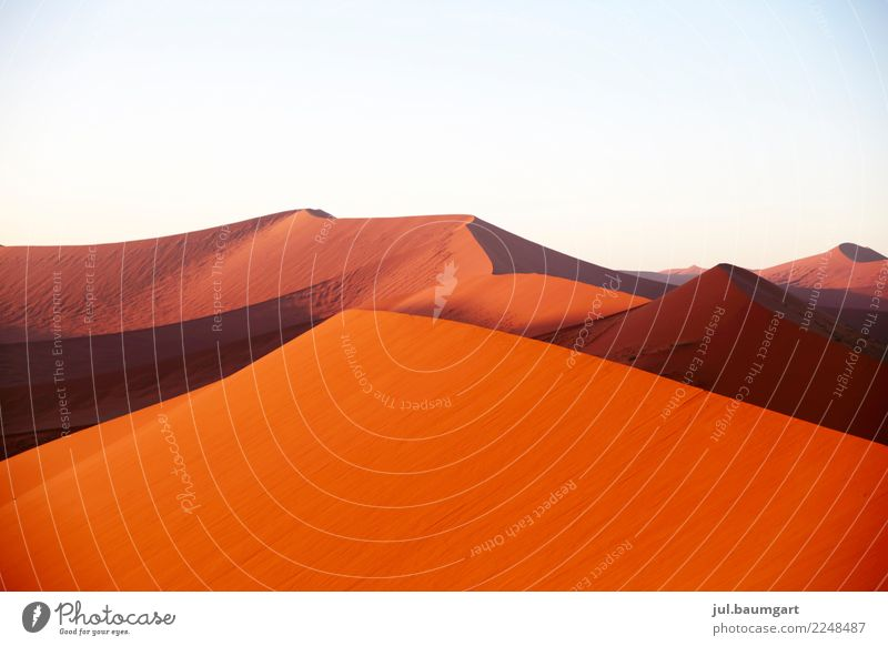 Sossusvlei Namibia Nature Landscape Earth Sand Sky Desert Africa Red Infinity Vacation & Travel Dune Colour photo Exterior shot Deserted Morning Dawn Day Light