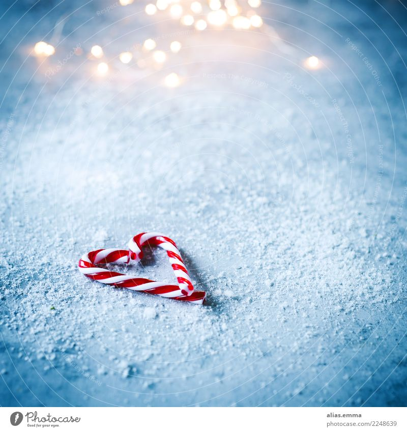 candy canes Candy Candy cane Christmas & Advent Heart Blue Blur Winter Snow Snowfall Christmas gift Card Copy Space Christmas decoration Decoration Heart-shaped