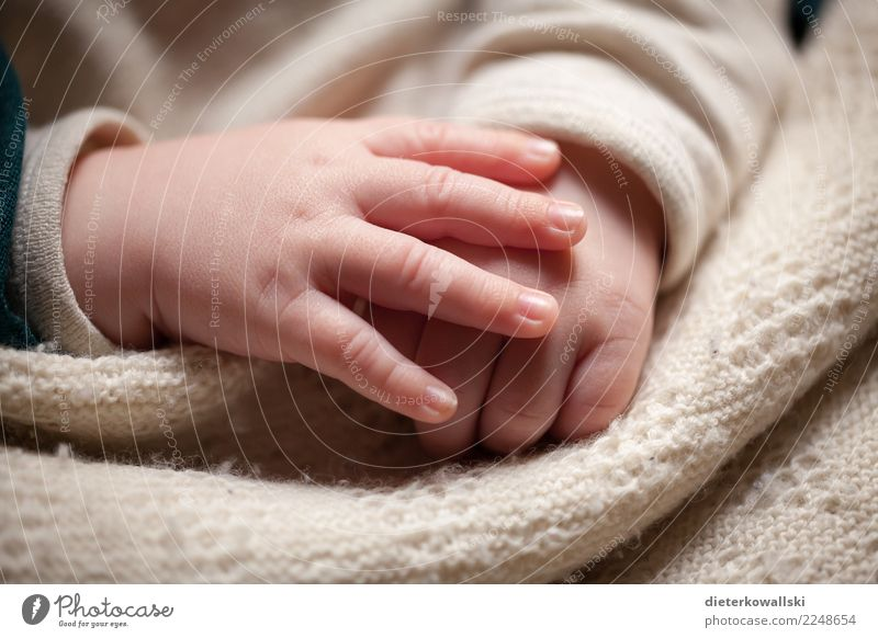 hands Child Baby Toddler Girl Boy (child) Hand 0 - 12 months Sleep Beautiful Cute Happy Contentment Joie de vivre (Vitality) Love Future Safety (feeling of)