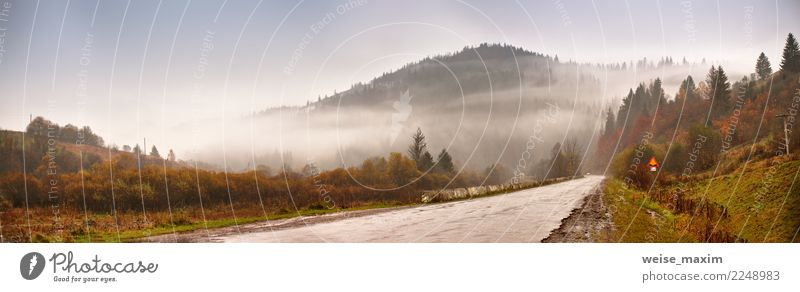 Panorama of road in mountains. Cloudy rainy misty autumn day Sky Nature Vacation & Travel Green Landscape Tree Clouds Far-off places Forest Mountain Street