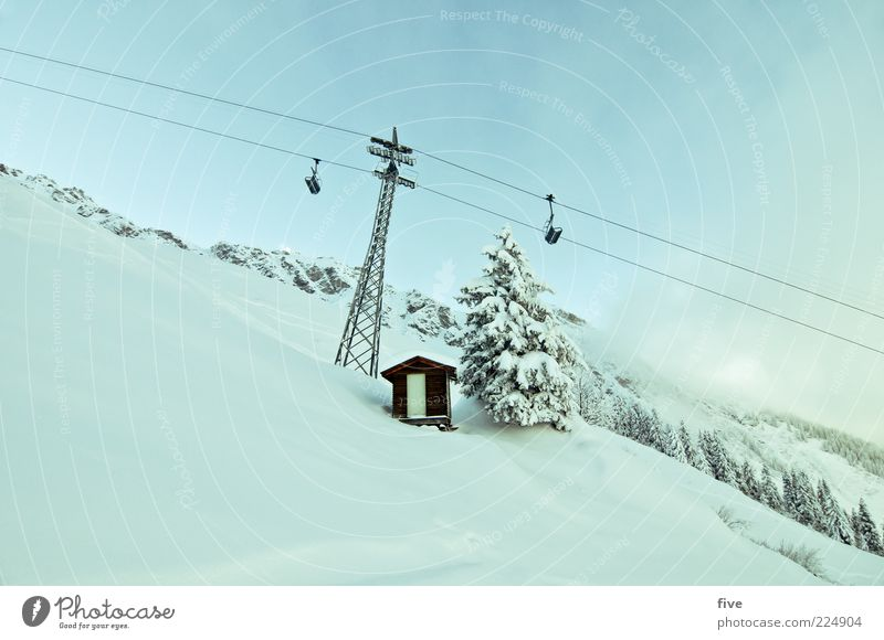 powder ride Ski run Nature Winter Beautiful weather Snow Plant Tree Hill Rock Alps Mountain Fresh Cold Ski lift Hut Door Colour photo Exterior shot Day