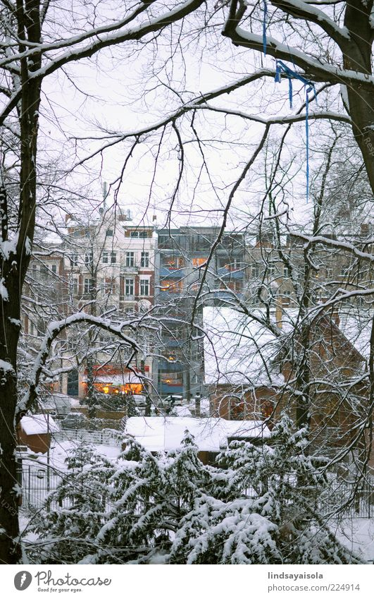 Winter Lights Nature Beautiful City Tree Vacation & Travel Winter Snow Window Environment Moody Park Weather Ice Leisure and hobbies Flat (apartment) Elegant