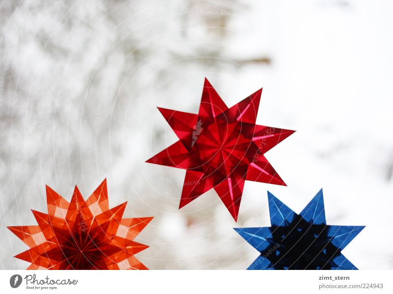 Christmas & Advent Blue Red Winter Snow Glittering Illuminate Decoration Esthetic Creativity Uniqueness Star (Symbol) Paper Symmetry Patient Precision