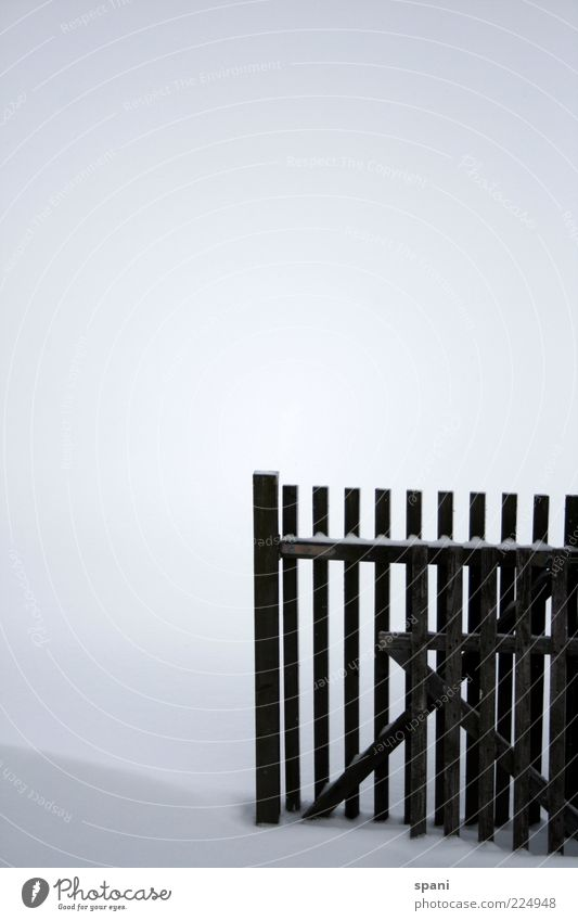 Old White Winter Black Snow Wood Esthetic Broken Fence Wooden board Barrier Sharp-edged Nature Wooden fence Wooden gate
