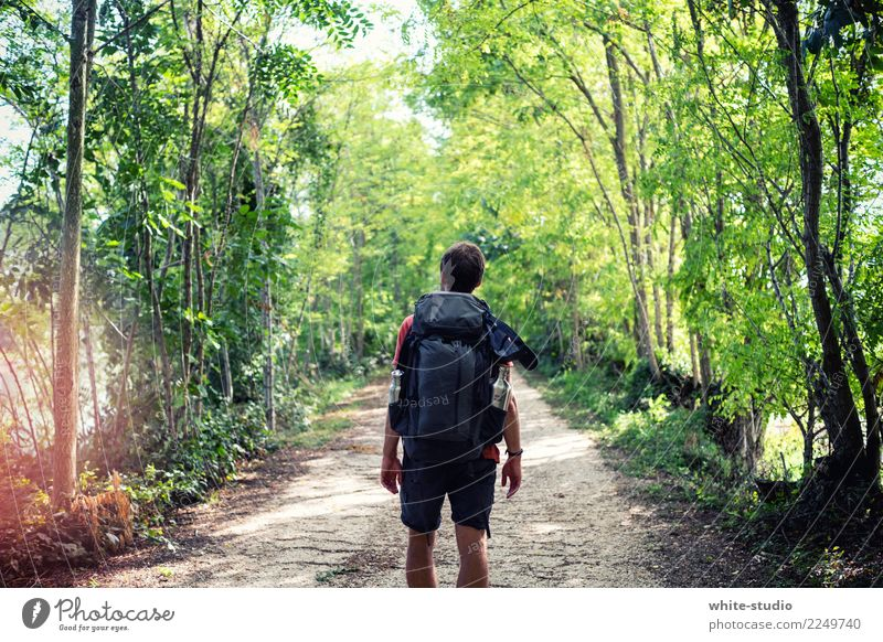 Into the wild Healthy Athletic Fitness Life Leisure and hobbies Vacation & Travel Tourism Trip Adventure Far-off places Freedom Hiking Sports Training