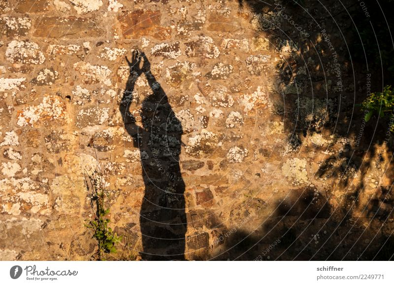 You know, just having fun dancing the name. Human being 1 Stand Hands up! Gesture shoulder stand Dance Shadow Shadow play Dark side Shadow child