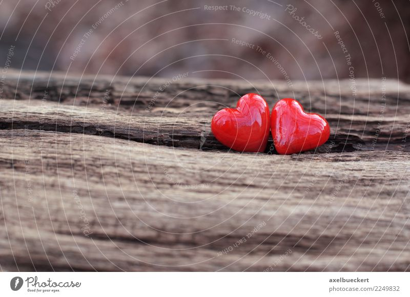 Christmas & Advent Tree Red Background picture Love Wood Together Friendship Heart Romance Symbols and metaphors Passion Lovers Valentine's Day Pottery