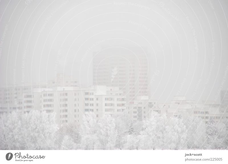 Sky City White Tree House (Residential Structure) Winter Cold Environment Architecture Snow Building Gray Bright Air Fog High-rise