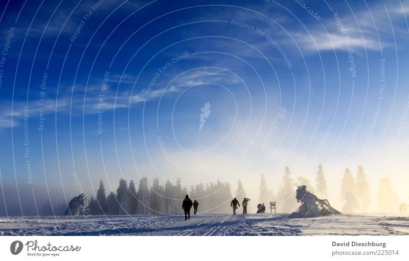 winter hiking country Human being 5 Nature Landscape Air Sky Clouds Winter Beautiful weather Ice Frost Snow Wild plant Forest Blue White Hiking To go for a walk