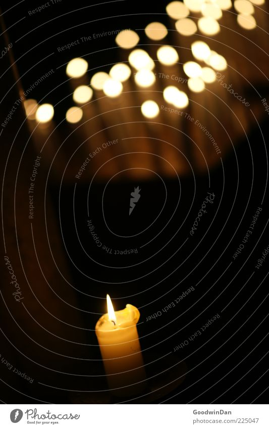 Dark Warmth Moody Fire Gloomy Hope Candle Flame Belief Candlelight Point of light Patch of light Dark background Candle flame Candle altar