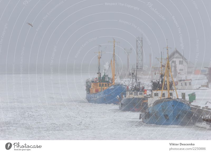 Ships fishermen in winter Organic produce Vacation & Travel Tourism Beach Ocean Winter Snow Nature Landscape Sky Wind Fog Coast North Sea Baltic Sea Village