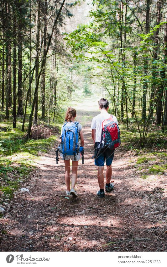 Boy and girl wandering in a forest on summer day Lifestyle Vacation & Travel Trip Adventure Freedom Summer Hiking Girl Boy (child) Young woman